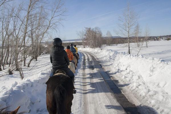 Конная экскурсия на Уркину гору Самарская Лука