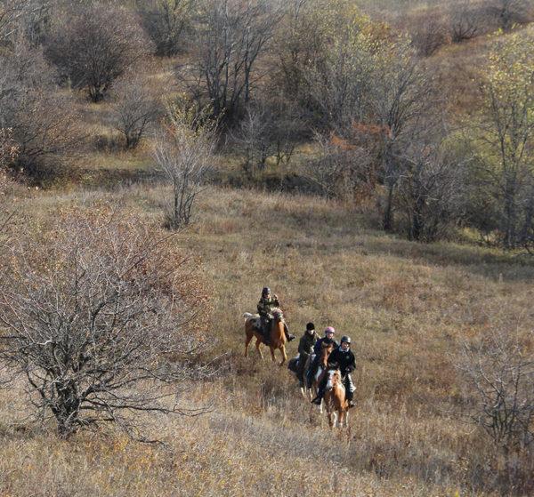 Конный поход к урочищу Косогор Самарская Лука