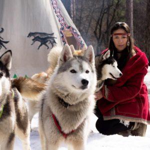 Экскурсия Деревня ездовых собак Серебро Севера